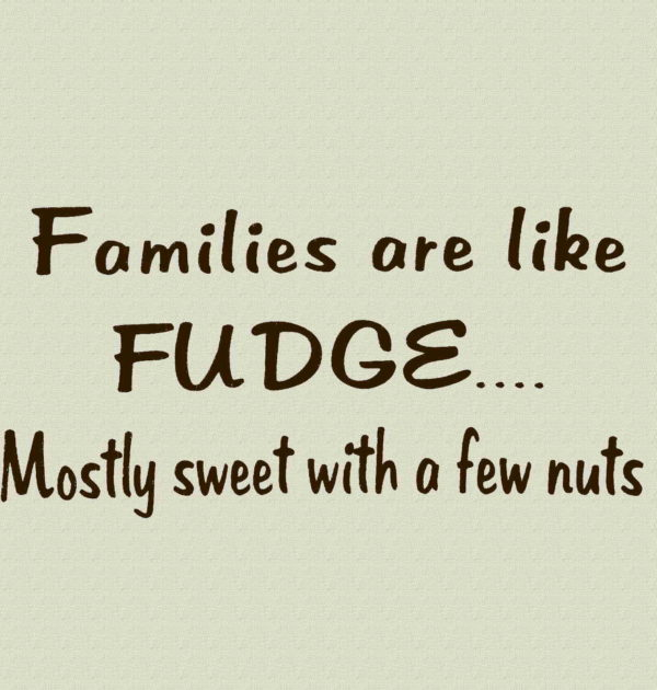 Families are like FUDGE...Mostly sweet with a few nuts T-Shirt.